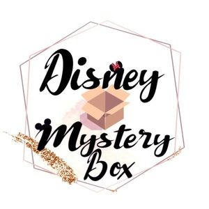 Disney Mystery Large Box